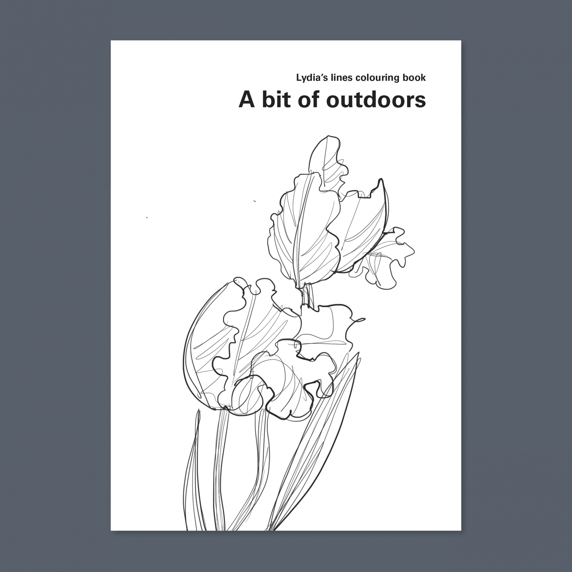 Lydia Thornley colouring books: outdoors (cover)